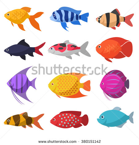 stock-vector-isolated-river-fish-set-of-freshwater-aquarium-cartoon-fishes-varieties-of-ornamental-popular-380151142